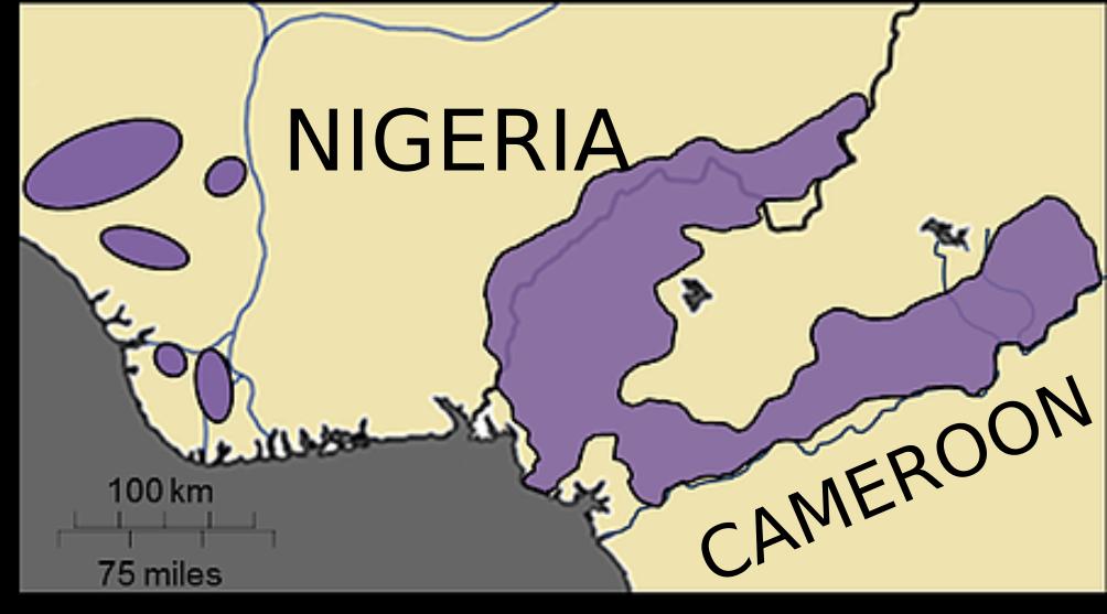 Nigeria-Cameroon