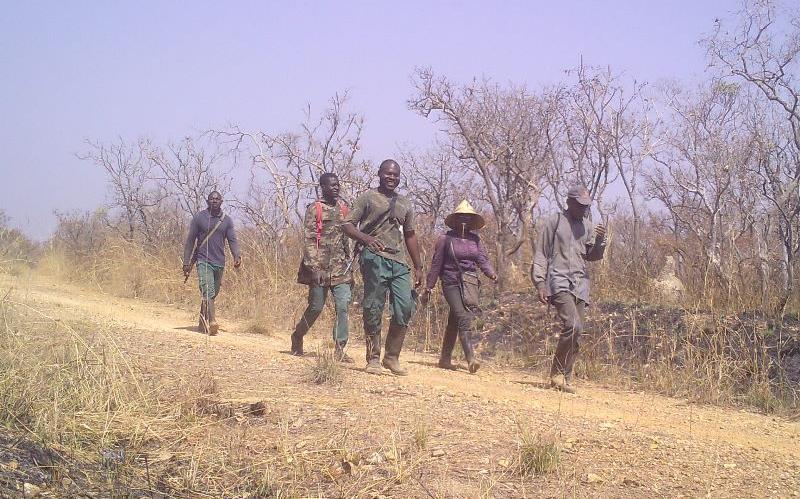 <h3)Sekakoh research team working on  the giraffe feeding habit in Benoue National Park</h3>